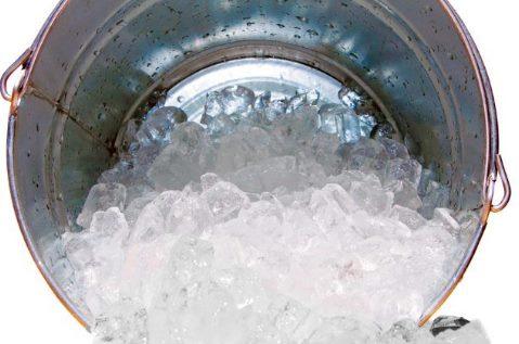 Rendam Jengkol Menggunakan Air Es